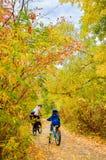 在自行车的家庭在秋天公园,父亲和孩子循环 免版税图库摄影