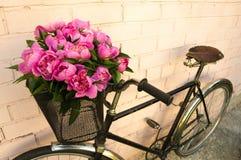 在自行车的花 库存照片