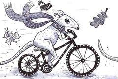 在自行车的鼠 免版税库存照片