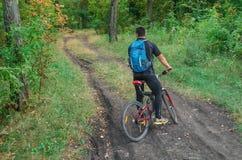 在自行车的Mountainbiker骑马在夏天公园晴天 库存图片