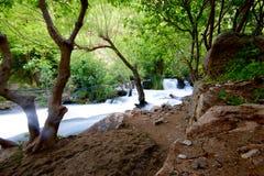在自治库尔德斯坦地区山的Khurmal Forrest在伊朗附近的 库存照片
