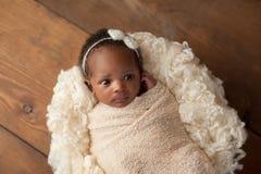 在舒展套包扎的机敏的新出生的女婴 免版税库存照片