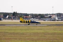 在航空L-39 Albatros的波儿地克的蜂喷气机队 库存照片