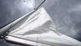 在航行游艇的风帆 股票录像