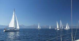 在航行赛船会的小船 豪华游艇行在小游艇船坞船坞的 免版税库存照片