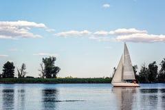 在航行赛船会的游艇 美丽的船乘快艇与白色风帆在蓝天的背景的第聂伯河与云彩的 免版税库存图片