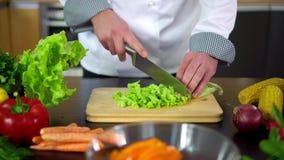 在船上准备沙拉-厨师切口莴苣在厨房里 股票视频