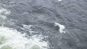 在船尾地和海鸥 库存照片