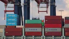 在船的装货容器 股票视频