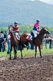 在良种马的二个车手在起始时间之前 免版税库存照片