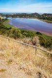 在色的湖的全景有草原的 塔小山野生生物储备公园 维多利亚,澳洲 免版税库存图片