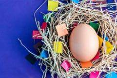 在色的背景的鸡蛋 库存照片