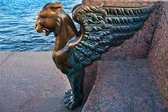 在艺术的学院的附近Griffon在圣彼德堡 免版税图库摄影