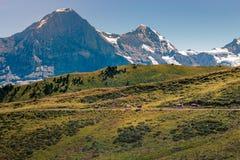 在艾格峰的全景 免版税库存照片