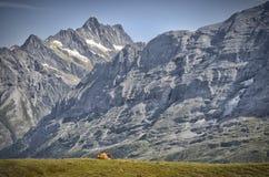 在艾格峰的看法有母牛的 库存照片