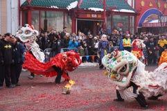 在节日的跳舞狮子 免版税库存照片