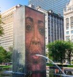 在芝加哥,美国的冠喷泉 库存图片