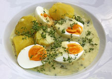 在芥末酱的煮沸的鸡蛋 库存图片
