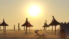 在芦苇伞的有薄雾的日出 库存照片