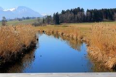 在芦苇和小河后的山地平线 库存图片