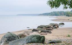 在芬兰湾的多岩石的海滩 爱沙尼亚 库存图片