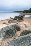 在芬兰湾的多岩石的海滩 爱沙尼亚 免版税库存图片