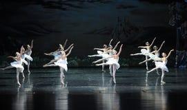 整洁在芭蕾芭蕾天鹅湖的形成 库存图片