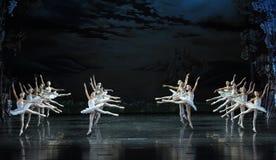 整洁在芭蕾芭蕾天鹅湖的形成 库存照片