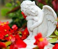 在花之间的严重天使 免版税库存照片