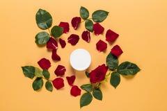 在花卉框架的奶油 库存图片