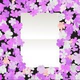 花卉消息 库存照片