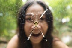在花园蜘蛛后的妇女面孔 免版税库存照片