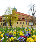 在花圃的看法正方形的 捷克城市Podebrady 库存图片