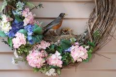 在花圈的美国知更鸟巢 免版税图库摄影