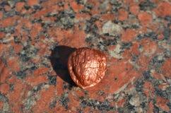 在花岗岩的古铜色核桃 图库摄影