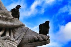 在花岗岩雕象栖息的鸽子在里斯本 免版税库存照片