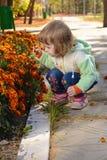 在花床附近的小孩子在公园 库存照片