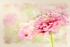 在花开花的水彩例证绘画的摘要桃红色五颜六色的形状 免版税库存照片