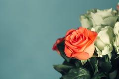 在花束的一朵红色玫瑰 库存图片