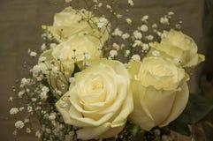 在花束的白色嫩玫瑰 库存图片