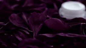 在花瓣和水背景,皮肤的自然科学的敏感skincare润肤霜面霜 影视素材