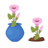 在花瓶传染媒介的花 免版税库存照片