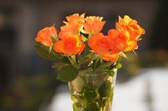 在花瓶的三文鱼色的玫瑰 免版税图库摄影