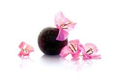 在花瓶的九重葛桃红色花 免版税图库摄影