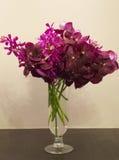 在花瓶的兰花花 免版税图库摄影