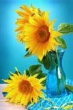 在花瓶的向日葵 免版税库存图片