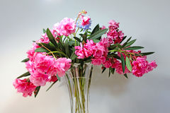 在花瓶的夏天花 库存照片