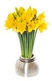 在花瓶的新鲜的春天水仙花 免版税库存图片