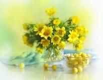 在花瓶的春天黄色花 免版税库存照片