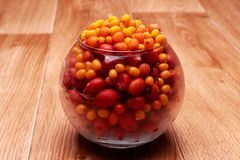 在花瓶的海鼠李莓果 库存图片